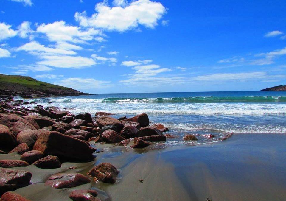 Shoal Cove Beach